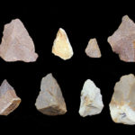 Sharp stones found in India signal surprisingly early toolmaking advances