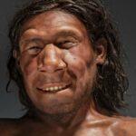 Neanderthal gene variants both increase and decrease the risk for severe Covid-19
